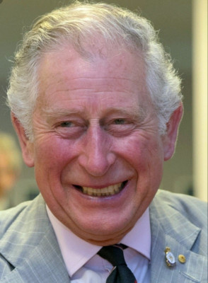 I had a vision about Charles, Prince of Wales.